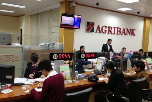 Agribank có hỗ trợ vay tín chấp với lương tiền mặt không?