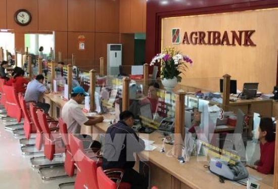 Vay tín chấp theo lương Agribank 2019