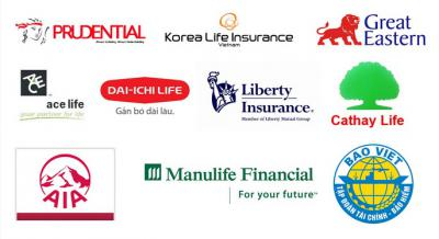 Vay theo bảo hiểm nhân thọ Prudential Finance